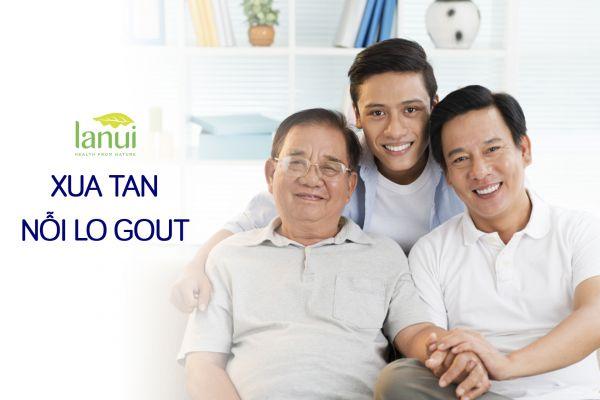 Cơ Chế Tác Dụng Của Gota Với Bệnh Gout